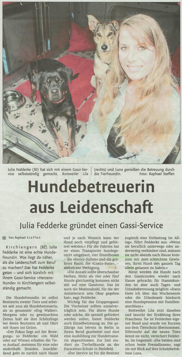 Zeitungsartikel im November 2016